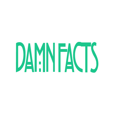 Flippy DamnFacts – OmgFacts Clone